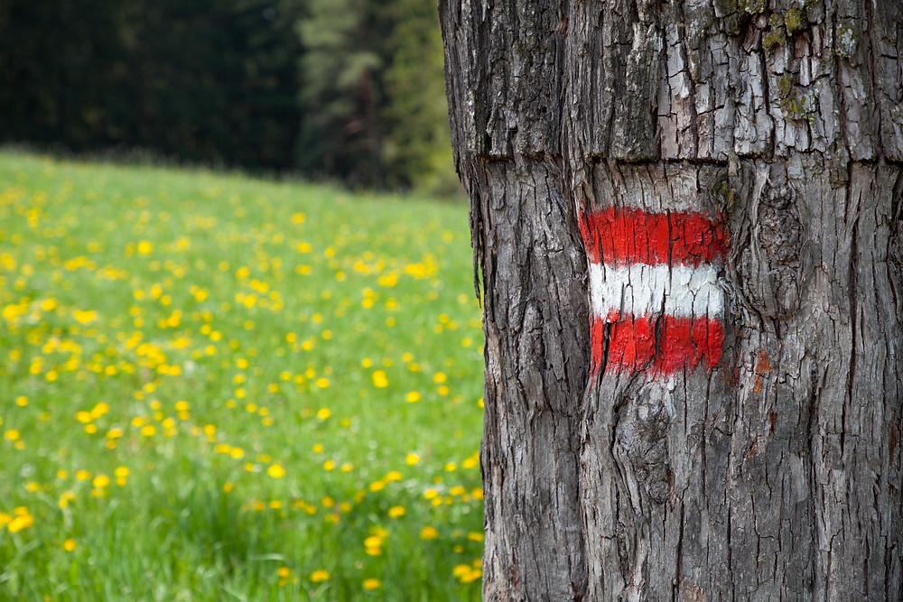 Wandermarkierung, Niederösterreich, Mostviertel, rot-weiß-rot, wandern, Ausflug, Wandertipp