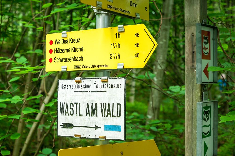 Annaberg, Annahm, Hennesteck, wandern, Wanderung, Ausflug, Niederösterreich, Mostviertel, weißes Kreuz
