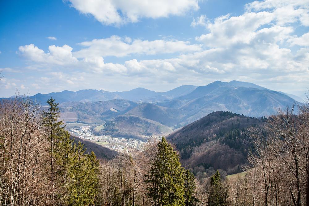 Ausblick, Voralpen, Muckenkogel, Schneerosenwarte, Niederösterreich, Mostviertel, Lilienfeld, Wandern, Wanderung