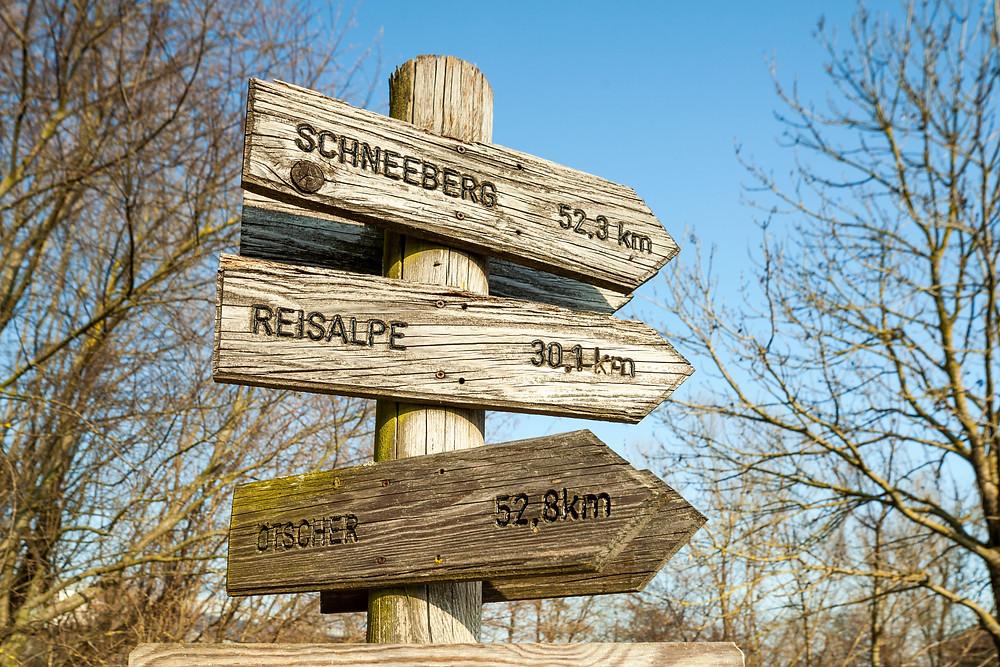 Feldmühle, St. Pölten, Traisen, Niederösterreich, Mostviertel, Landeshauptstadt, Stadtwandern, wandern, Wanderung, Rundwanderung, Biotop, Natur, Naturerlebnis, Artenvielfalt