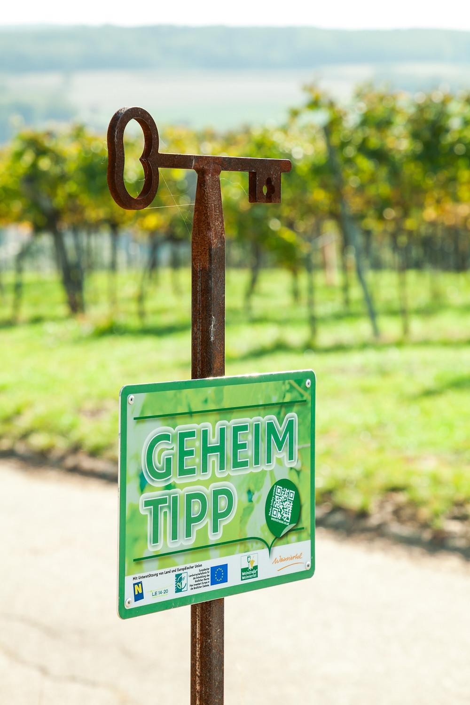 Wandern, Weinviertel, Niederösterreich, Wanderung, Weingärten, Weinberge