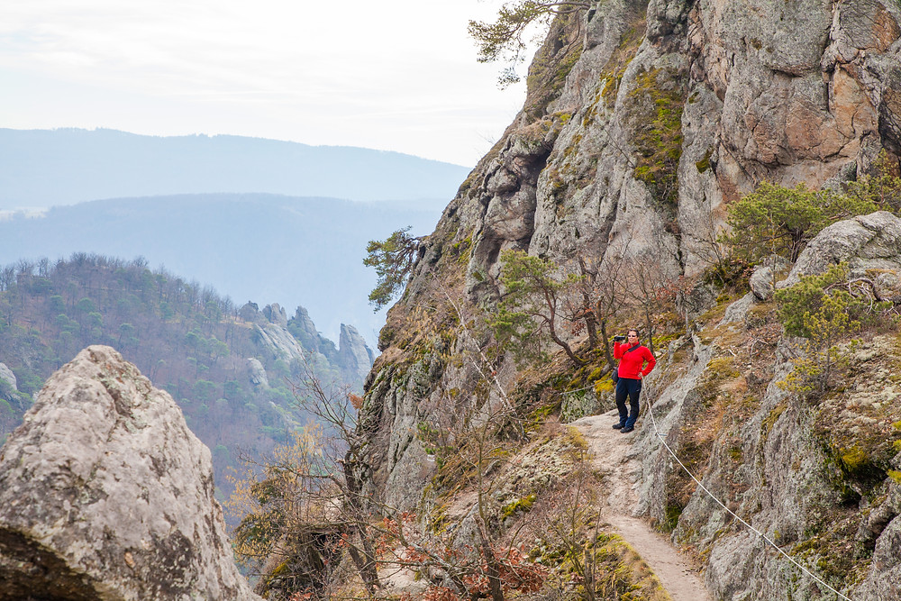 Gesicherter Steig, Wachau, Niederösterreich, Dürnstein, Vogelbergsteig, Wandern, Wanderung, Steig, trittsicher, Frühling, Donau, Wanderweg