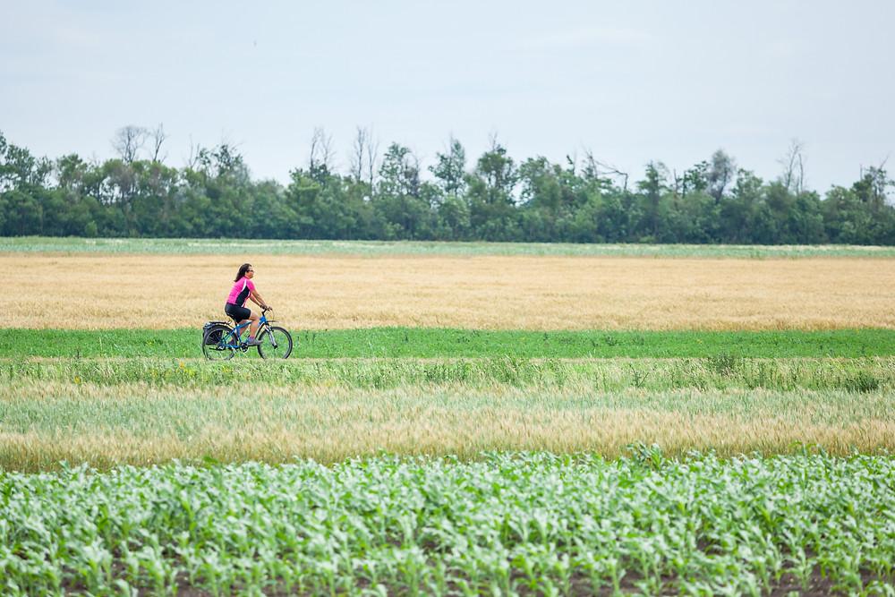 Radfahrerin, Sonja Lechner, die reisereporter, Lange Lacke, Neusiedler See, Neusiedlersee, Burgenland, Urlaub, Kurzurlaub, Radfahren, Radtour, Radrunde, Radurlaub,