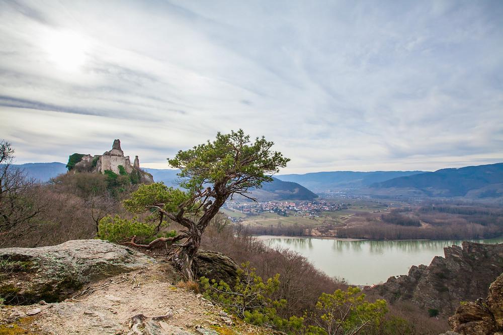 Ruine Dürnstein, Donau, Wachau, Niederösterreich, Wandern, Wanderung, König Richard Löwenherz, Blondel, Sage, Frühling, Steig, Panorama, Ausblick