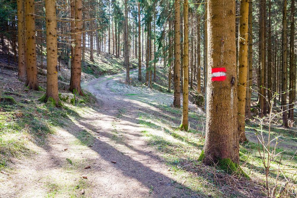 Wanderweg, Wanderung, Wandern, Kamptal, Rappottenstein, Waldviertel, Niederösterreich