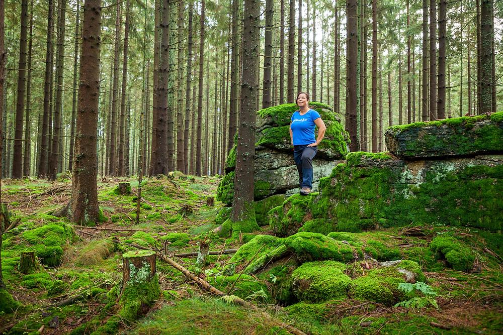 Nebelstein, Waldviertel, wandern, Wanderung, Niederösterreich, Wanderurlaub, Wanderreise, Herbst, Wald, Sonja Lechner, Die reisereporter
