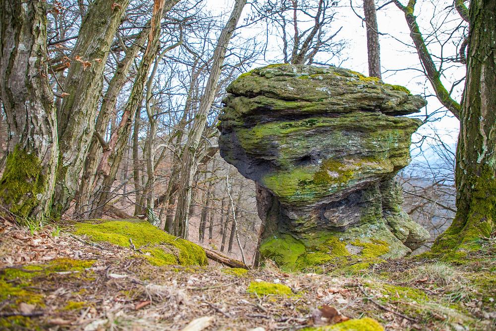 Steinformation, Vogelbergsteig, Wachau, Niederösterreich, Wandern, Wanderung, Wanderer, Steig