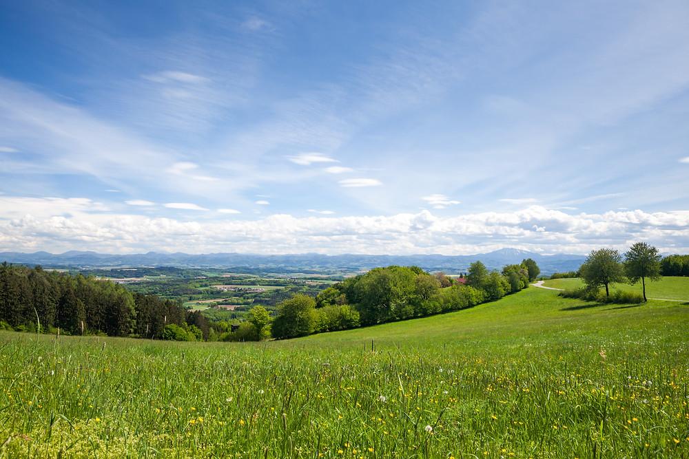 Steinbachklamm, Nibelungengau, Waldviertel, Donau, Niederösterreich, Wandern, Ausflug, Wandertipp