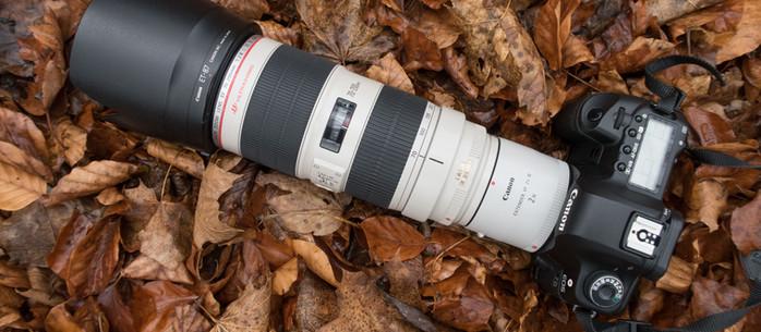 Fotografie Tipp: Der Telekonverter – mit mehr Brennweite näher an das Fotomotiv