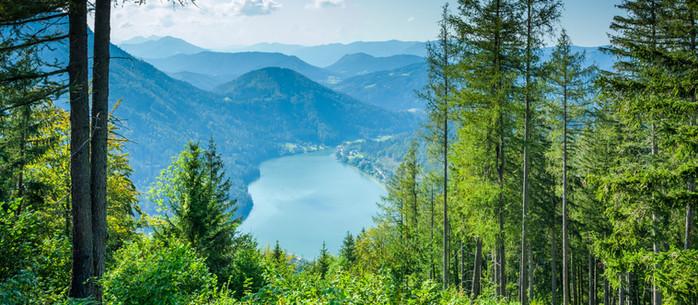 Wandern Mostviertel: Lunzer See - Maißzinken in Niederösterreich