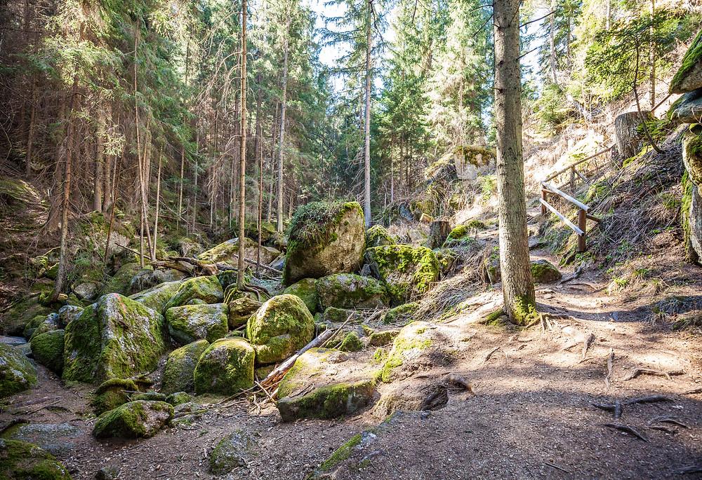 Lohnbachklamm, Waldviertel, Niederösterreich, Felsen, Granit, Moos, Wandern, Wanderung