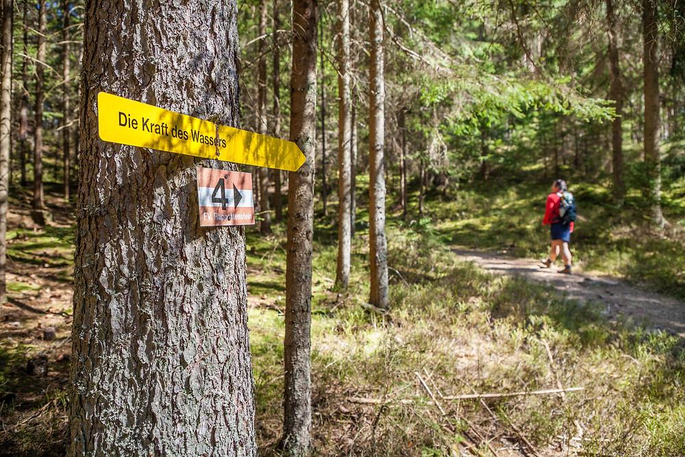 Lohnbachfall, Wandern, Wanderung, Waldviertel, Niederösterreich