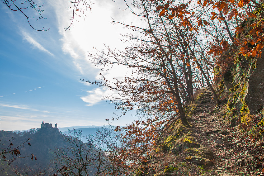 Vogelbergsteig, Ruine Dürnstein, Wachau, Dürnstein, Niederösterreich, Donau, König Richard Löwenherz, Blondel, Sage, Ruine