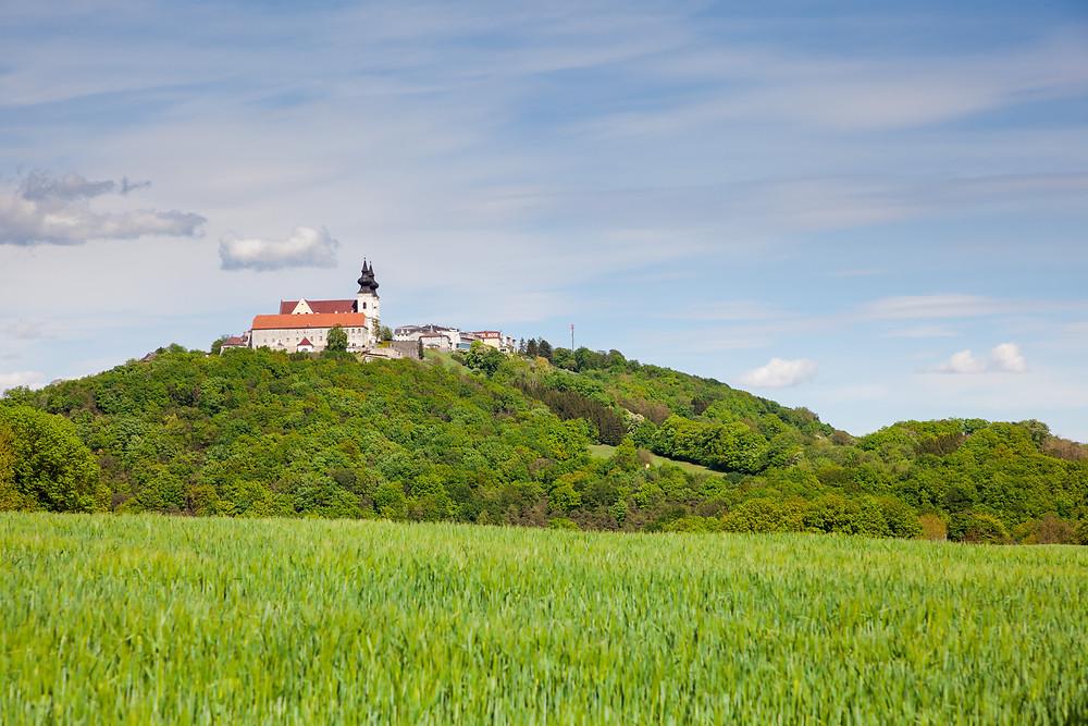 Maria Taferl, Wallfahrt, Wallfahrtskirche, Steinbachklamm, Nibelungengau, Waldviertel, Donau, Niederösterreich, Wandern, Ausflug, Wandertipp