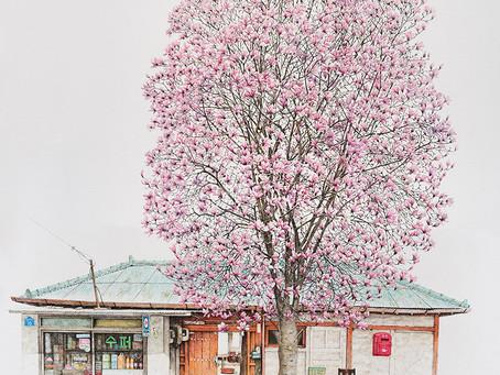 Cool: Pinturas de Memórias com Me Kyeoung Lee
