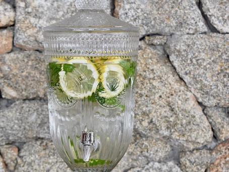 Sugestões de Água Aromatizada