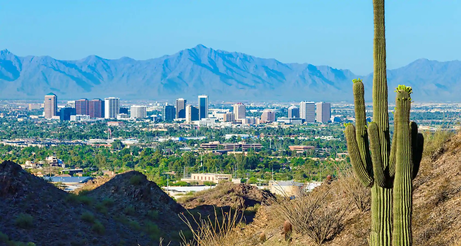 Phoenix.webp