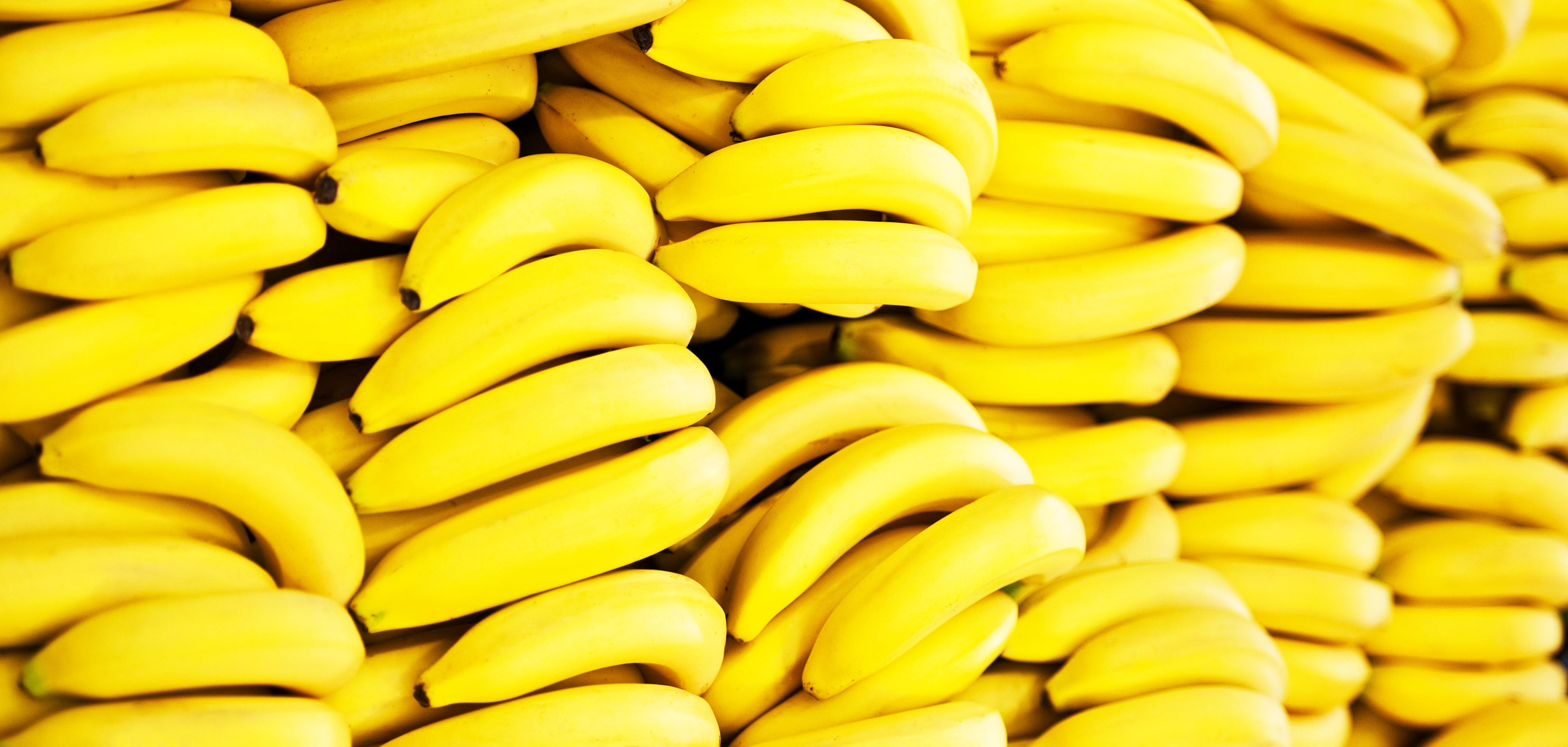 Shenton Bananas Stack
