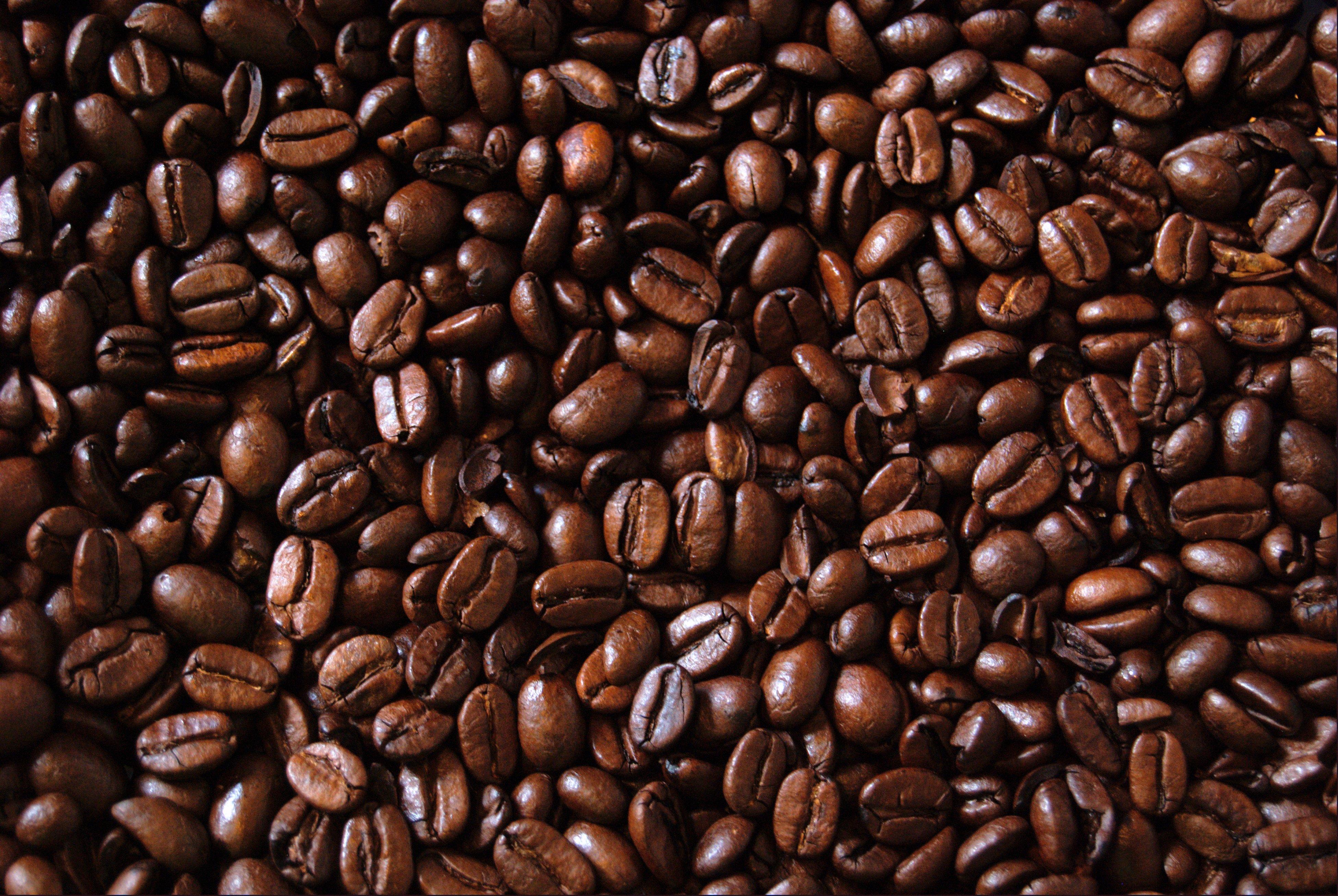 Shenton Coffee Beans