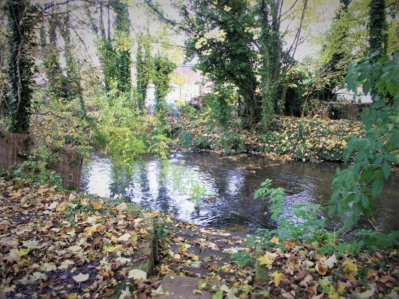 River+Wye.jpg