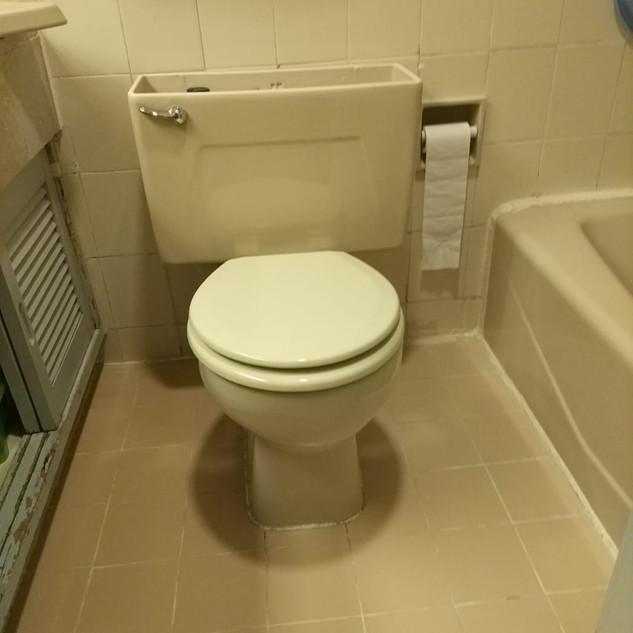 更換座廁工程