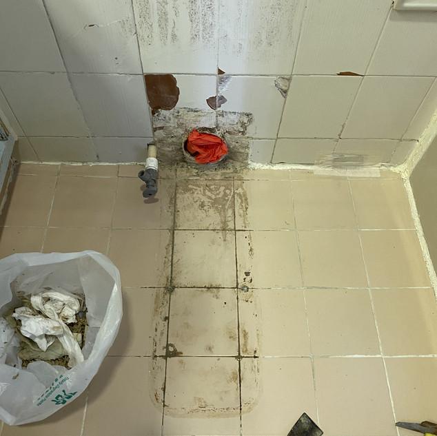 拆除及清走舊座廁