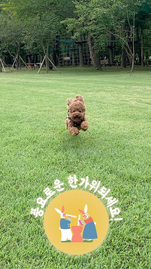 Snapchat_Chuseok2020_filter.jpg