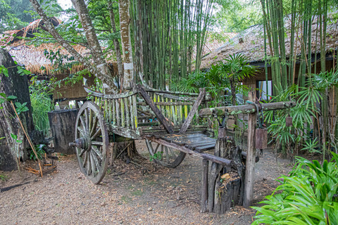 Kim Wealleans - 24-Old traditional Hmong horse cart