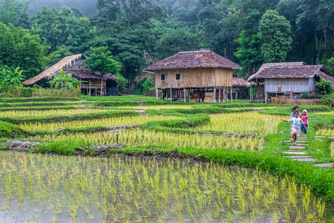Kim Wealleans - 13- Typical Hmong village, with houses and rice fields