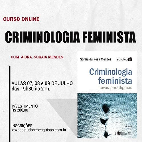 CURSO CRIMINOLOGIA FEMINISTA