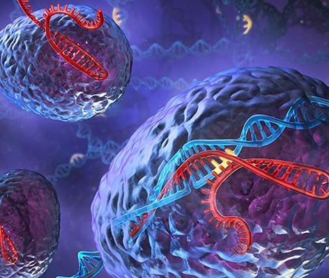 CRISPR: The Story So Far