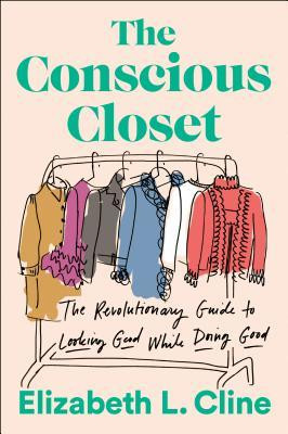book cover of The Conscious Closet