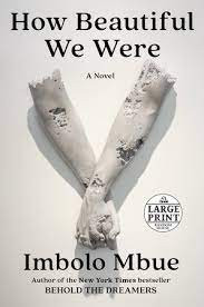 Book Cover of How Beautiful We Were by Imbolo Mbue