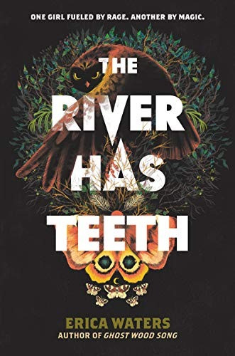 Book cover of The River Has Teeth by Erica Waters