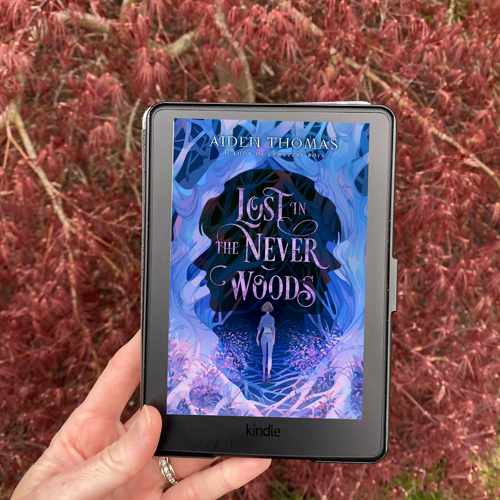 Book Cover of Lost in the Never Woods by Aiden Thomas