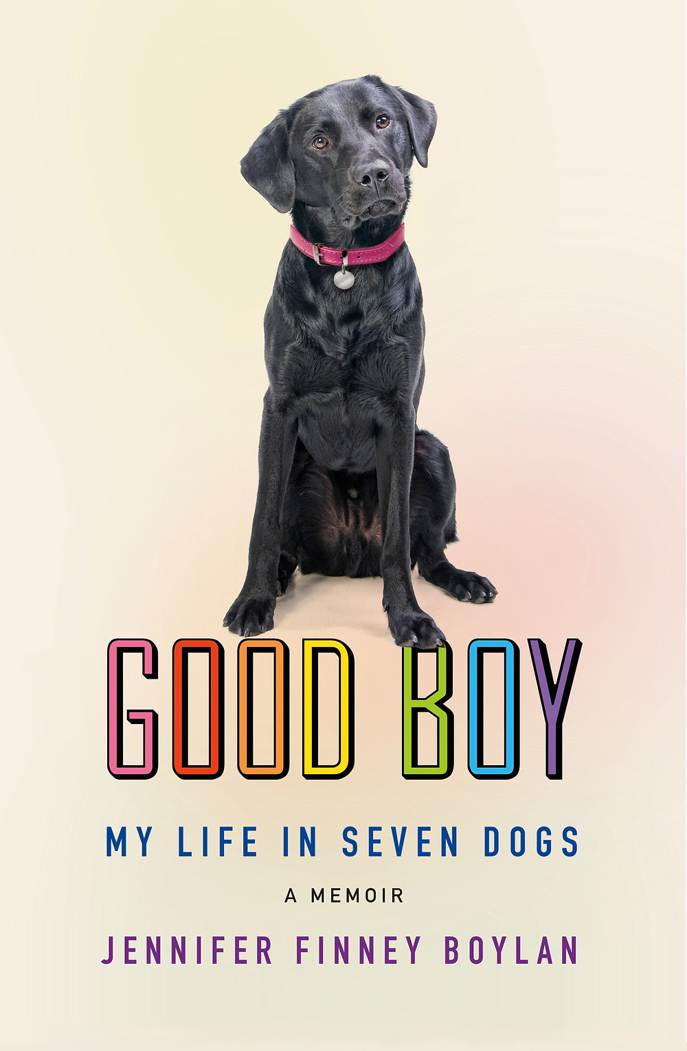 cover of Good Boy
