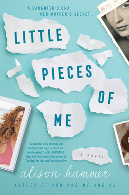 Book cover of Alison Hammer's Little Pieces of Me