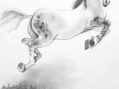 """LETTURA 4' Cap. del libro """"Nafis e i Corridoi colorati""""                     di Edmea Caponnetto"""