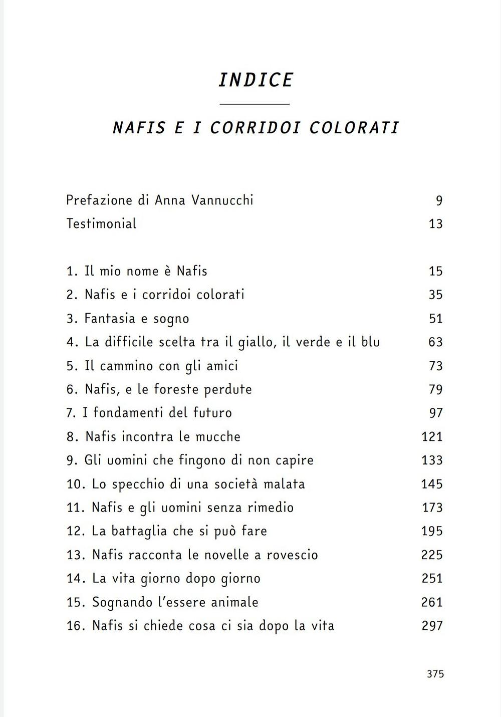Libro indice Nafis e i corridoi colorati book ambiente pandemia