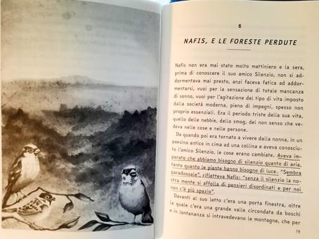 Recensione al libro di Nafis da parte di @Brezzapoetica (Sofia Raffagnato)