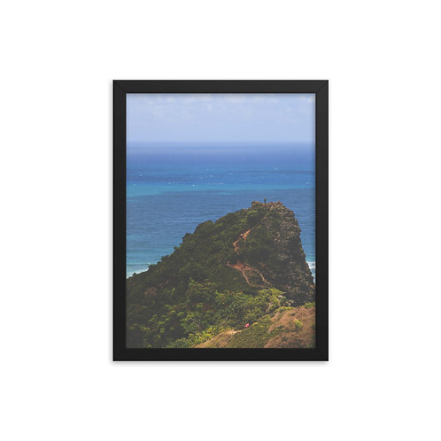Crouching Lion Framed Poster