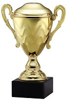 trophies, custom trophies