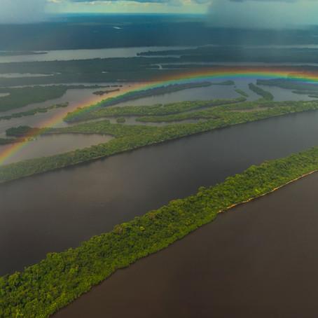 AMAZÔNIA EM PÉ | ANAVILHANAS
