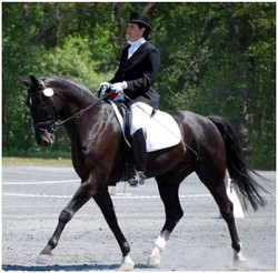 Rita Brown Dressage