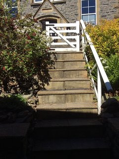 Steps down from Road