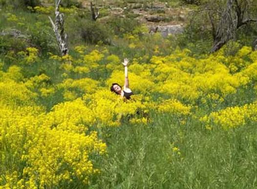 clases de yoga en coruña flor de tila