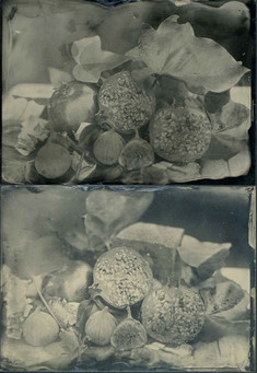 Ambrotypes / Wet Collodian Positives on glass.