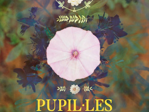 'Tota estiu', primer adelanto del nuevo disco de Pupil·les