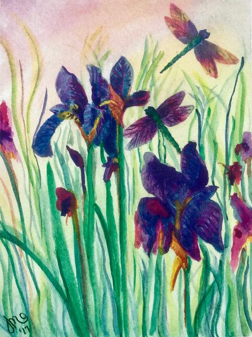Dragon Flies and Iris' Greeting Card