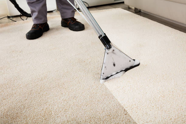 Professional Steam Cleaning per room